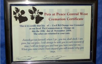 Cremation Certificates
